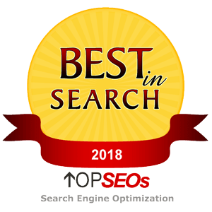 Top SEOs - 2018 Best in Search